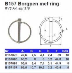 RVS Borgpennen met ring B157