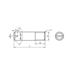 RVS Stelschroeven met schacht en zaagsnede DIN 427