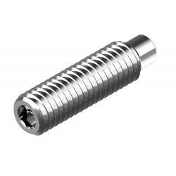 RVS Stelschroeven met binnenzeskant en tap DIN 915