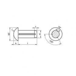 RVS Bolkop kerfpennen DIN 1476 / ISO 8746